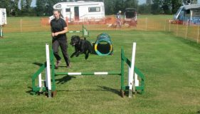 The Barking Bugle Agility Show Report