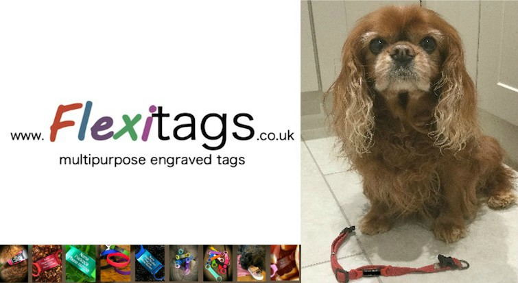 Flexitags – The must have ID tags!