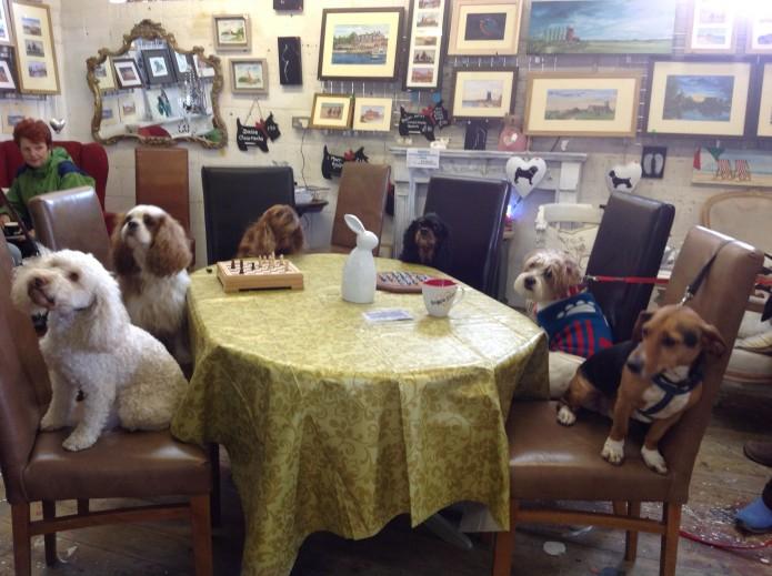 Gorlestone Doggy Diner
