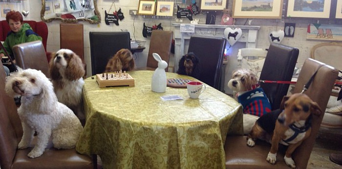 Dog Friendly Cafe Holt