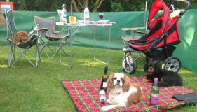 Cavalier Camping in The Lincolnshire Wolds!
