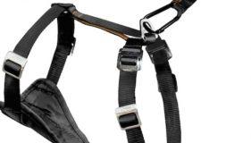 Spike test drives the Kurgo Tru–Fit harness