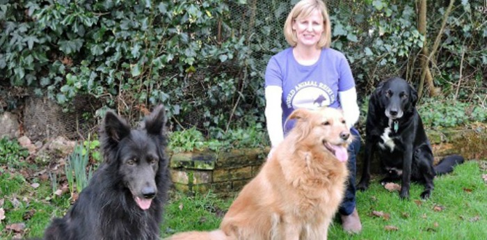 Reiki for Dogs!  Find your inner woof!
