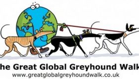 The Great Global Greyhound Walk!
