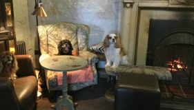 Lifeboat Inn gets Pawstar Approval!