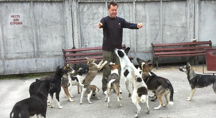 Výsledek obrázku pro Dogs of chernobyl