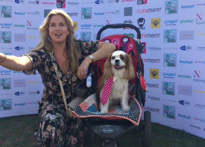 BB Repawter, Gizmo, with Penny Lancaster