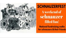 Calling all Schnauzers and friends! Schnauzerfest UK